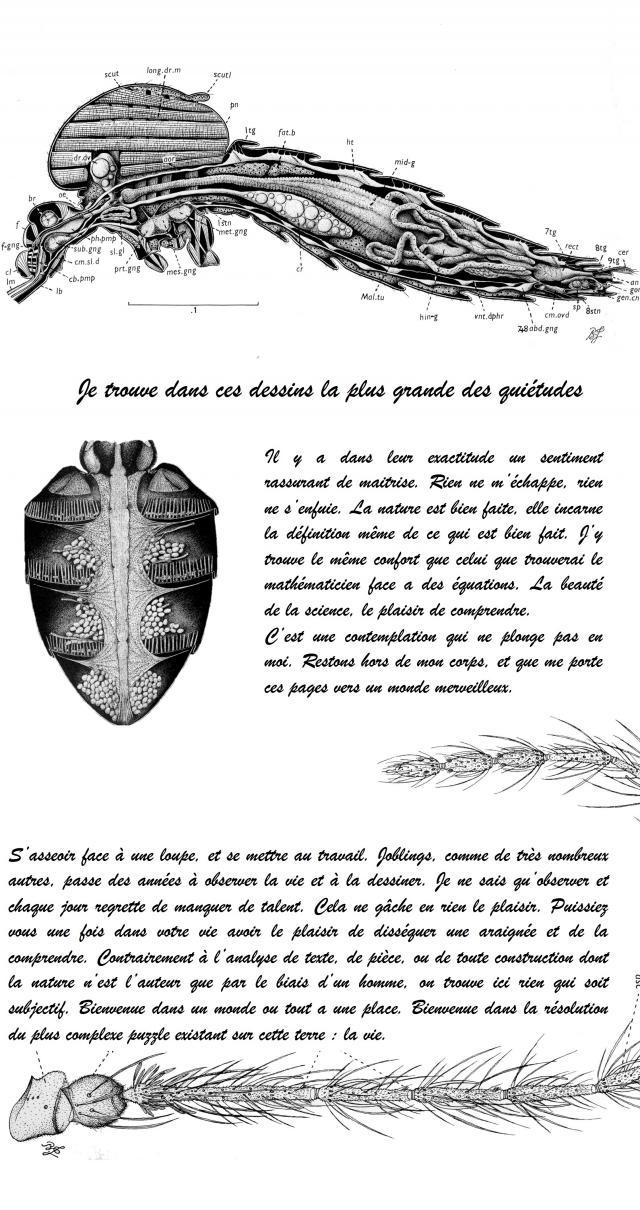 http://laboratoire.cowblog.fr/images/Lavie.jpg